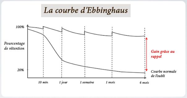 courbe de l'oubli d'Ebbinghaus ou les données dans le digital learning